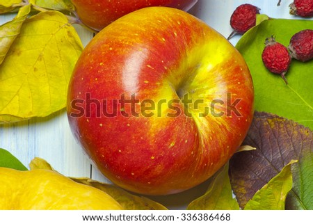 ripe apple, dogwood and autumn leaves on a blue wooden background