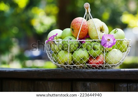 Ripe apples in basket outdoors - stock photo