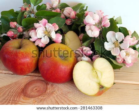 Ripe apples whole and half sliced and branch with blossoms       - stock photo