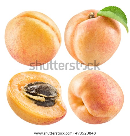 Ripe apricot fruits and apricot slice. File contains four clipping paths.