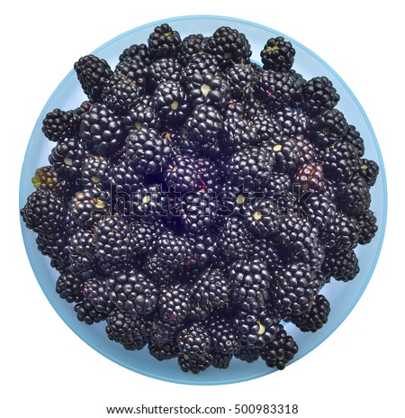 Ripe blackberries in bowl (hybrid berry of raspberry and wild bramble).