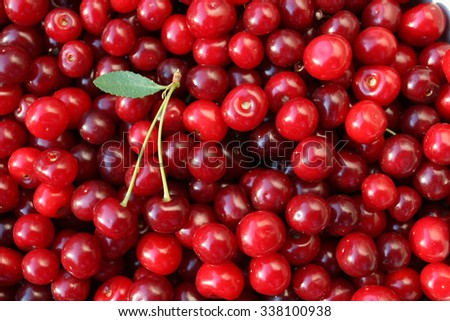 ripe cherries with a leaf on a background of cherries - stock photo