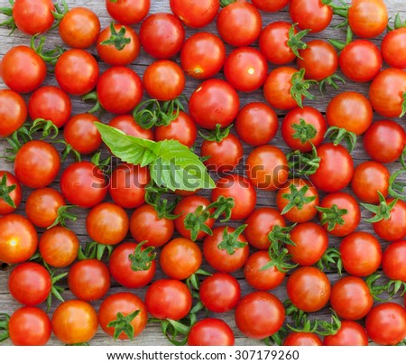 Ripe cherry tomatoes texture and basil leaves on wooden table - stock photo
