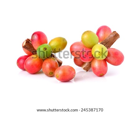 ripe coffee isolated on white background - stock photo