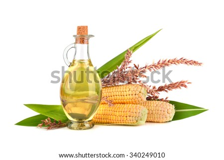 Ripe corn in cobs and corn oil in glass bottle with green leaves on white background