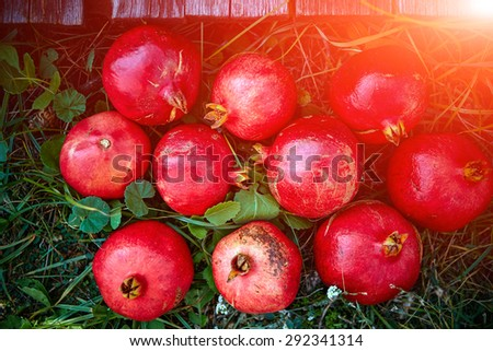 ripe cracked raw pomegranates on a green grass background - stock photo