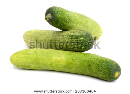 ripe cucumber isolated on white background - stock photo