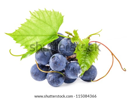 Ripe dark grapes with leaves, Isolated on white background, with clipping paths