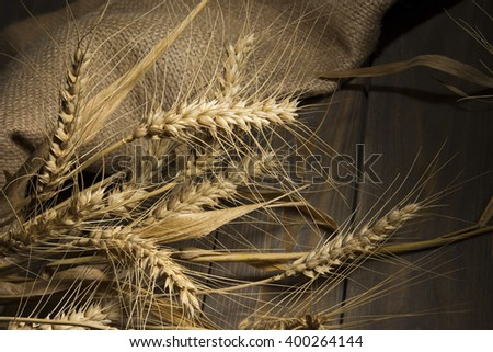 Ripe ears of wheat on the wooden floor in the barn.