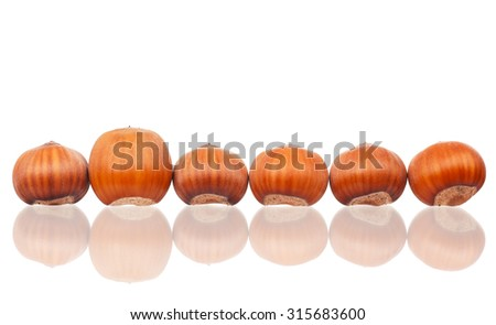 Ripe filberts isolated on white background close-up - stock photo
