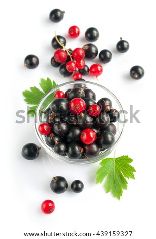 Ripe fresh black and red currants isolated on white background