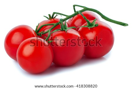 Ripe fresh cherry tomatoes on branch isolated on white background. Juicy organic cherry tomatoes  - stock photo