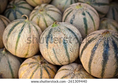 Ripe fresh melons pile in a farmers market. Horizontal shot with a selective focus