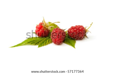 Ripe fresh raspberries with leaves on the white background - stock photo