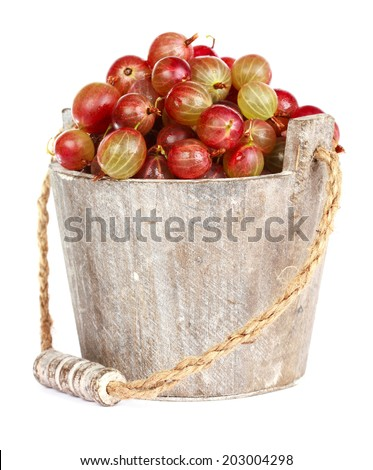 Ripe gooseberry in wooden bucket on white background - stock photo