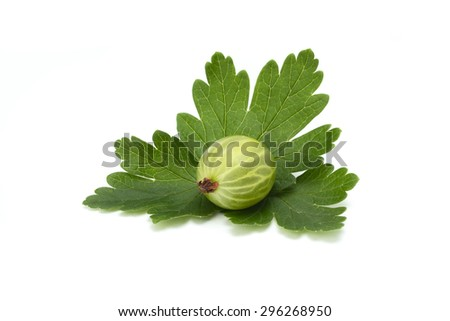 ripe green gooseberries with leaves on white background - stock photo