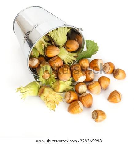 Ripe hazelnut flowing from tin bucket - stock photo