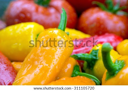 Ripe juicy farm fresh yellow, orange and red peppers and tomatoes. - stock photo