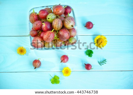 Ripe juicy red gooseberry in glass bowl, yellow chamomiles and green leaves on painted blue wooden background - stock photo