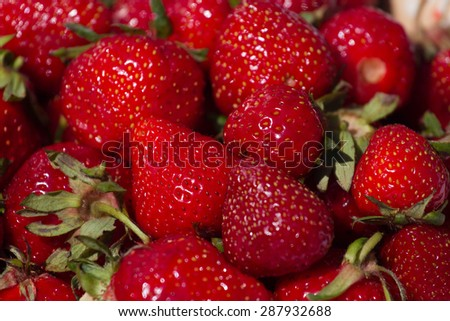 Ripe juicy red strawberries for  market background.  The juicy fruit for diet food.  - stock photo