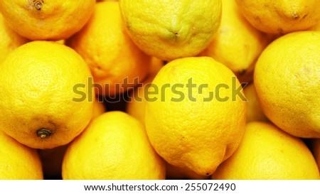 ripe lemons                  - stock photo