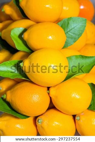 Ripe lemons, background on the shop counter - stock photo