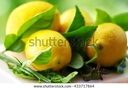 ripe lemons with leaves in table - stock photo