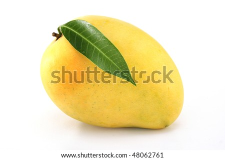 Ripe mango on white - stock photo