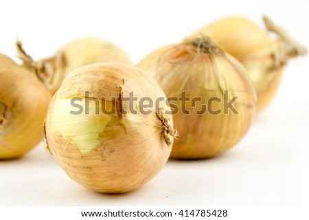 Ripe onion on a white background / yellow onion isolated on white background cutout / Fresh golden onions / close up isolated - stock photo