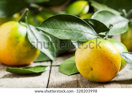 Ripe orange and green tangerines with leaves plucked from the tree on an old wooden table, selective focus