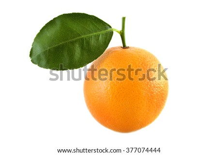 Ripe orange fruit on white background