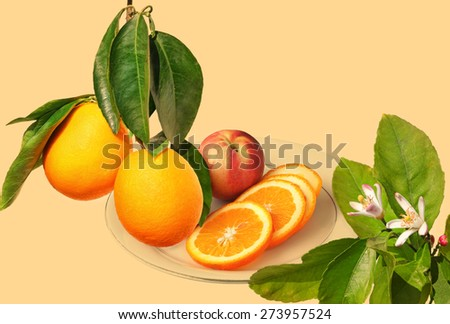 Ripe orange fruits on a branch, citrus flowers on the tree and orange fruit sliced on a the plate ready for eating. Vintage tone color background - stock photo