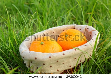 Ripe orange on green grass
