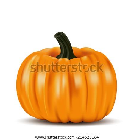 Ripe orange pumpkin vegetable - stock photo