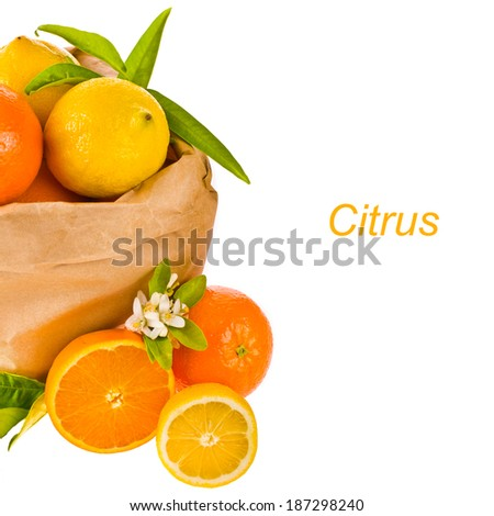 ripe oranges and lemons lie in a paper bag decorated with leaves and flowers of orange isolated on white background - stock photo