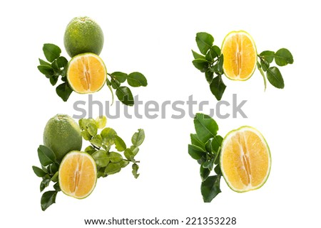 Ripe oranges with leaves. Raster version - stock photo