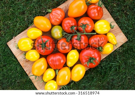 Ripe organic colorful tomatoes on cutting board. Autumn harvest season. Delicious, tasty and healthy food - stock photo