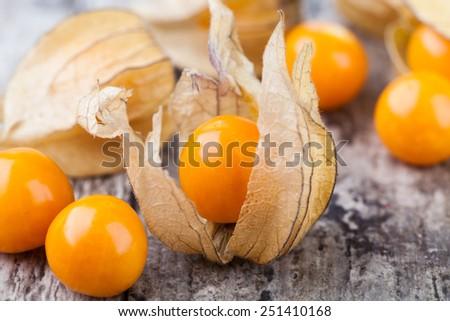 ripe physalis isolated on white background - stock photo