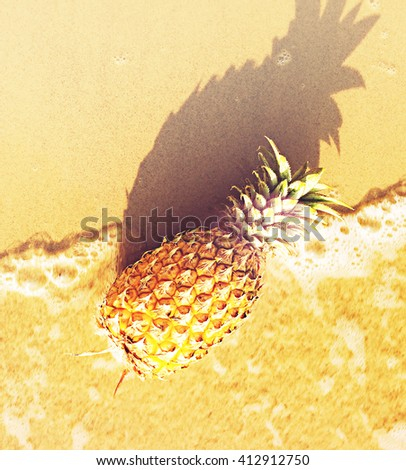 Ripe pineapple on the beach overlooking the white sandy beach and  sea. - stock photo