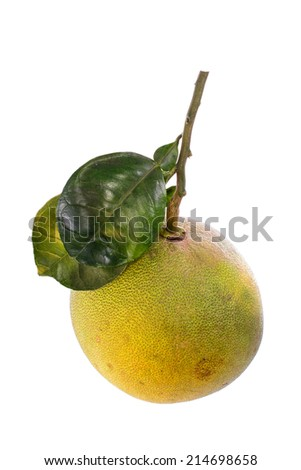 ripe Pomelo, isolated on a white background