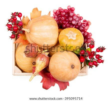 Ripe pumpkin and autumn berries in a wooden box view from above isolated on white background. - stock photo