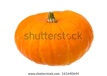 Ripe pumpkin isolated on the white