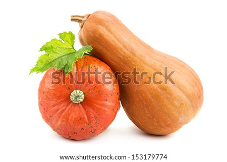 ripe pumpkin isolated on white background - stock photo
