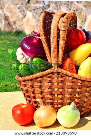 Ripe, raw vegetables in the picnic basket in the nature - stock photo