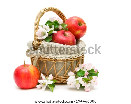 Ripe red apples and apple-tree flowers in a basket on a white background. horizontal photo. - stock photo