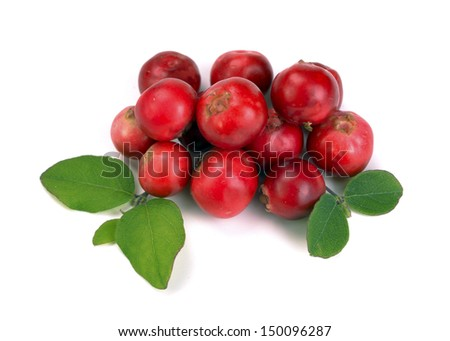 ripe red cranberries on a white background