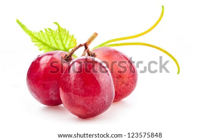 Ripe red grapes with leaves, Isolated on white background - stock photo