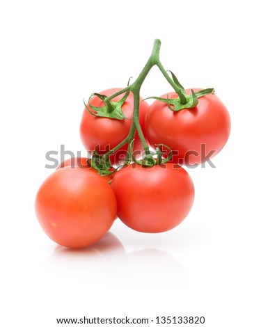 ripe red tomatoes on a branch on a white background. vertical photo.