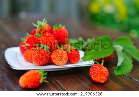 Ripe strawberry on a white porcelain plate. - stock photo