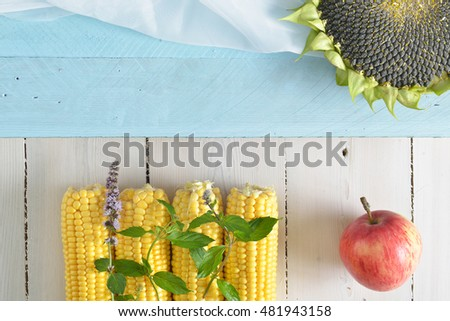 ripe sunflower, corn and apples on a white wooden background